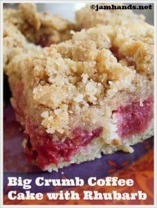 Big Crumb Coffee Cake with Rhubarb