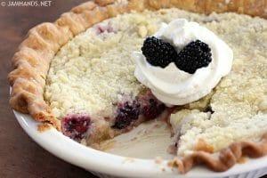 Blackberry Crumb Pie